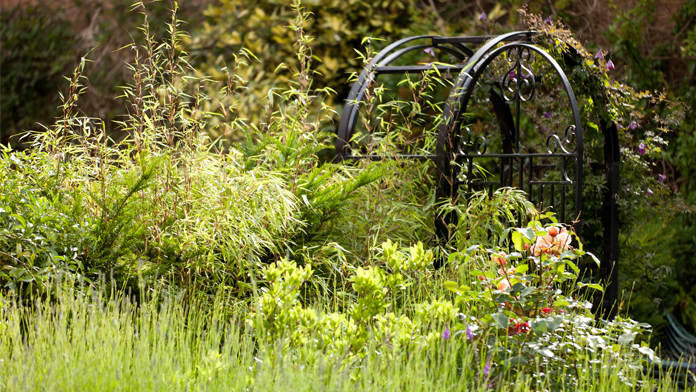 undefinedGarden gate and beautiful gardens of Benslow
