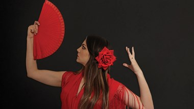 Flamenco at Benslow